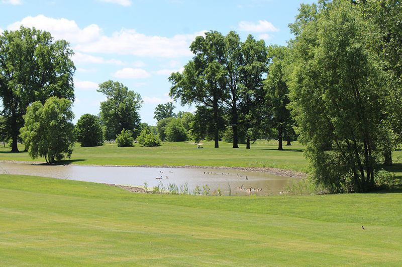 Chandler Park Golf Course